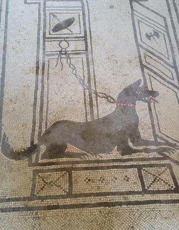 10A-Pompei (30-mosaiques)